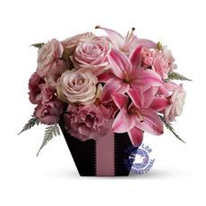 [호주]Lovely Pink
