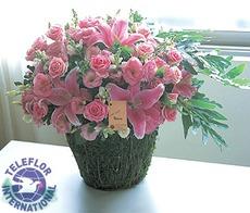 [대만]꽃바구니-1