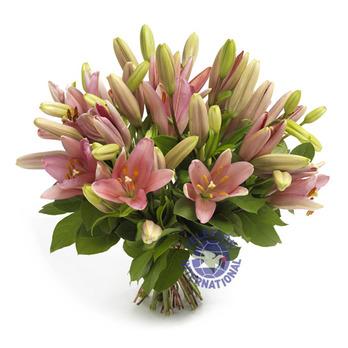 [프랑스]꽃다발-3