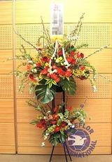 [일본]축하화환(특-1)