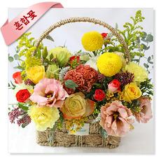 옐로우팝(혼합꽃)