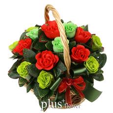 비누꽃- 보고픈 사랑